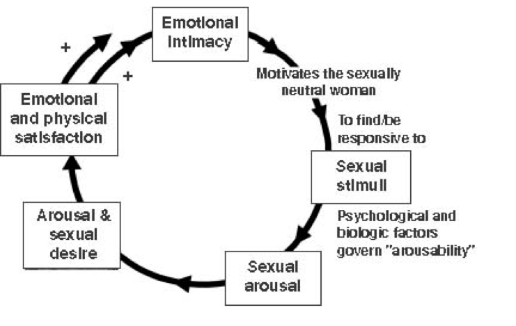 The cyclical arousal model