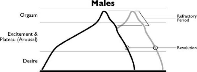 Male vs female sex drive